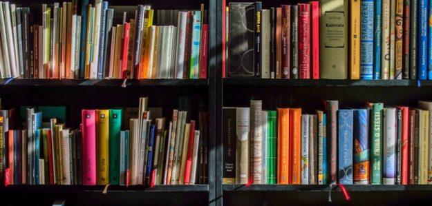 ניב עימוד ספרים