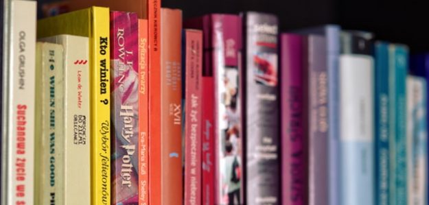 מנדלי מוכר ספרים ברשת